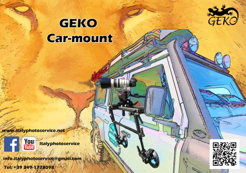 Geko car mount